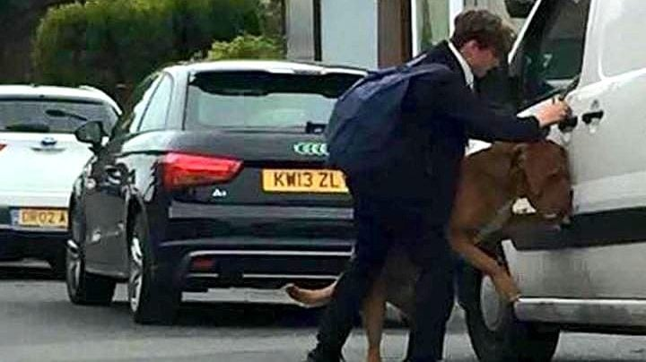 Schoolboy Saves the Life of a Dog Who Accidentally Hanged Himself with His Leash