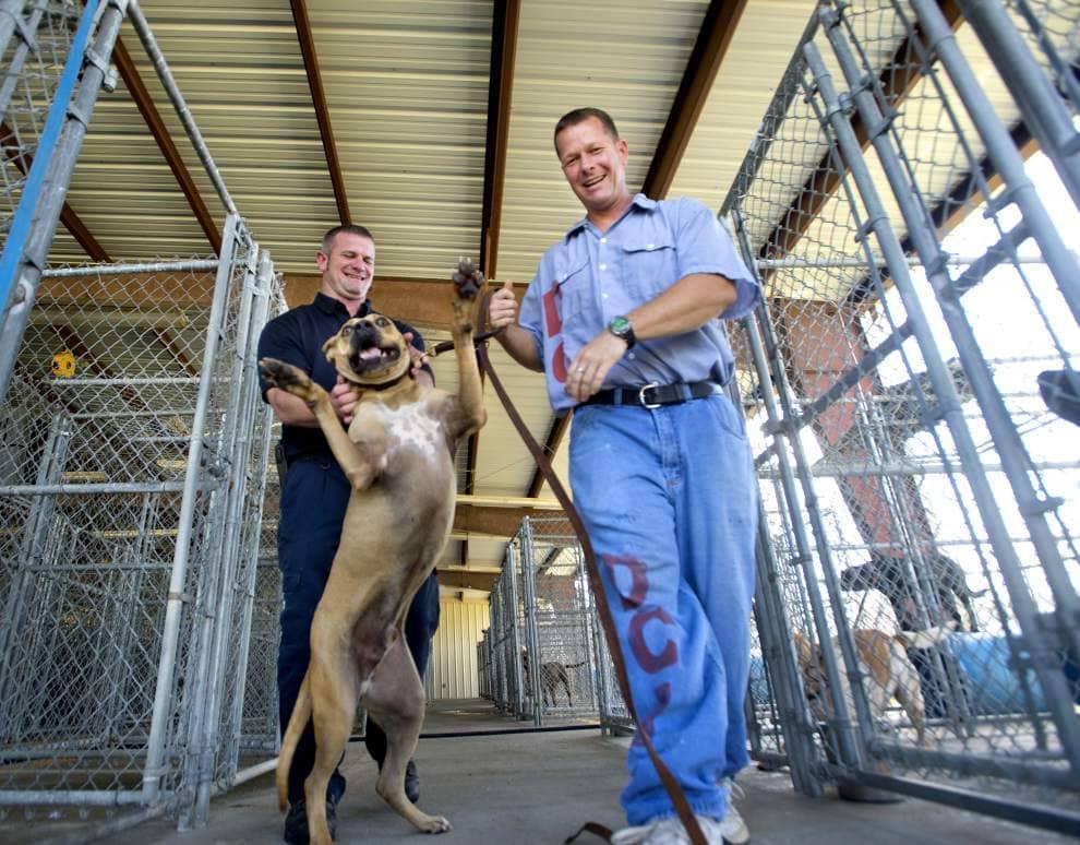 Pen Pals: Dixon Correctional Facilities Unique Program
