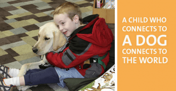 Autistic Children, the World, and Dogs