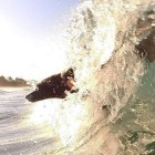 """Board"" Collie! Meet Mia, the Incredible, Surfing Dog"