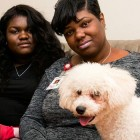 Grieving Mom Faces Eviction for Keeping Late 9-Year-Old Son's Dog