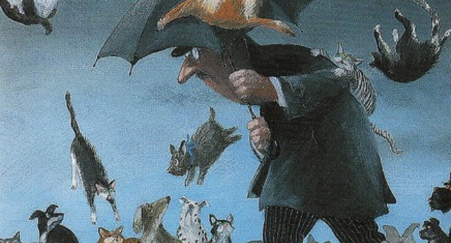 It's Raining Cats and Dogs?
