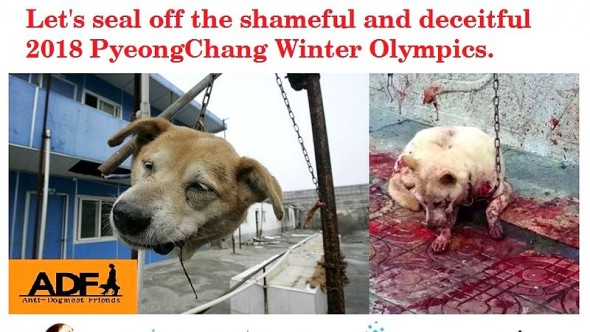 7.14.16 - South Korea Dog Slaughter - Boycott the Olympics2