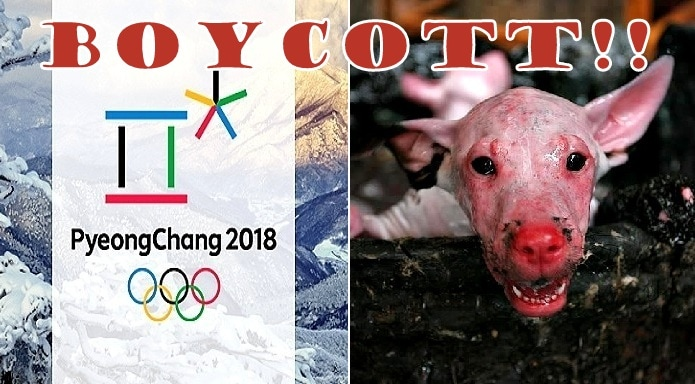 End the Horrifying Dog & Cat Slaughter in South Korea:  BOYCOTT THE 2018 OLYMPICS!