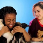 This Is What Happens When You Give Adoptable Rescue Puppies to Drunk Girls
