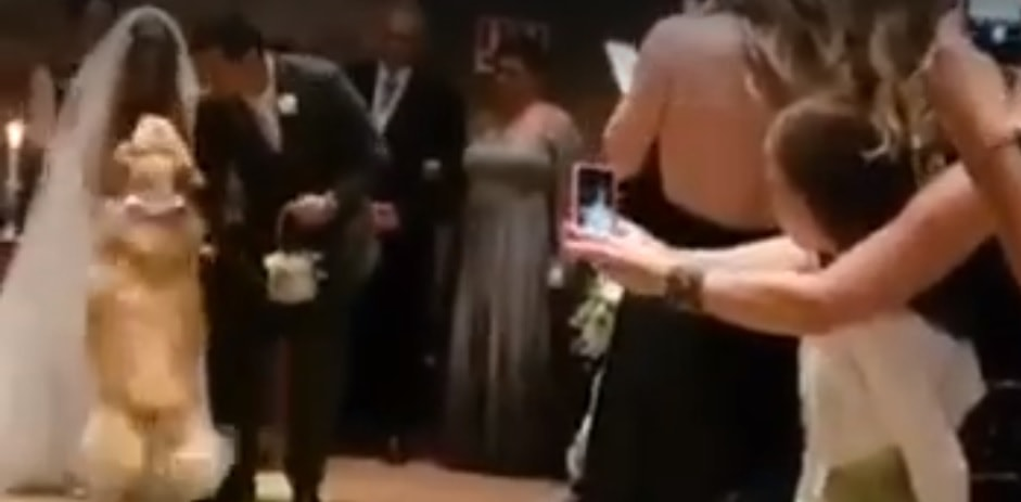 Big Fluffy Golden Carries the Rings for a Beautiful Wedding Ceremony