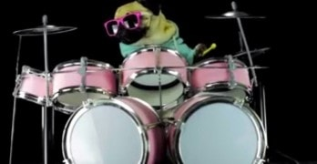 Hardcore Pug Rocks Out on Drum Kit to Metallica's Enter Sandman
