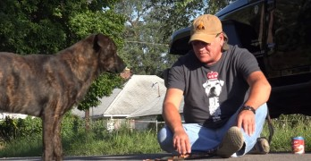 Randy Grim of Stray Rescue St. Louis Shows the More Frustrating Part of Dog Rescue!