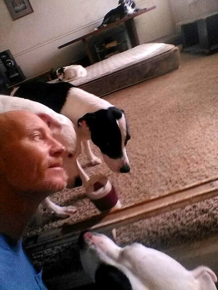 7.29.16 Disabled Man and His Eight Dogs Will Be Made Homeless Unless a Miracle Happens0