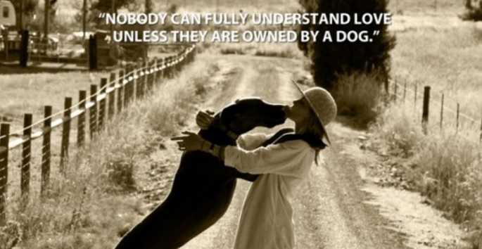 """""""Nobody Can Fully Understand Love Until They Are Owned by a Dog"""""""