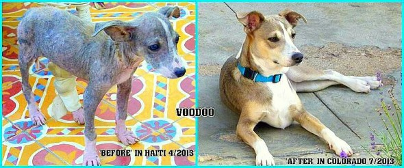 7.4.16 - Voodoo in Haiti