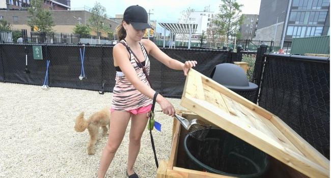 Brooklyn Park Wants MORE Dog Poop?!