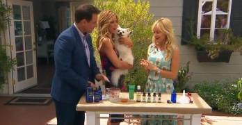 Got Fleas, But Hate Chemicals? DIY Your Own Shampoo & Spray!