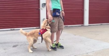 Landlord Boots Fosters Training Service Dog for Veteran
