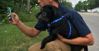 Catch 'em all, Walk a Dog! Indiana Shelter Capitalizes on Pokémon Go Craze!