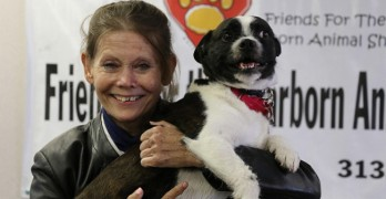 Microchip Reunites Dog & Owner After 2 Years and 1000 Miles