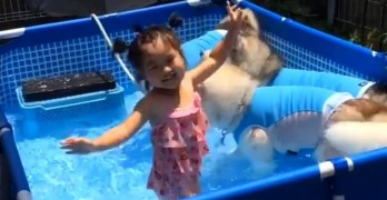 This Little Girl Would Be Every One of Us at a Husky Pool Party!