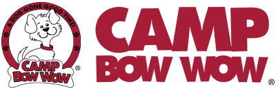8.10.16 - camp bow wowEND