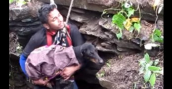 8.12.16 - dog rescued from well in indiaFEAT