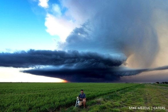 8.17.16 - Rescue Dog Is Living Her Dreams as a Storm Chaser5