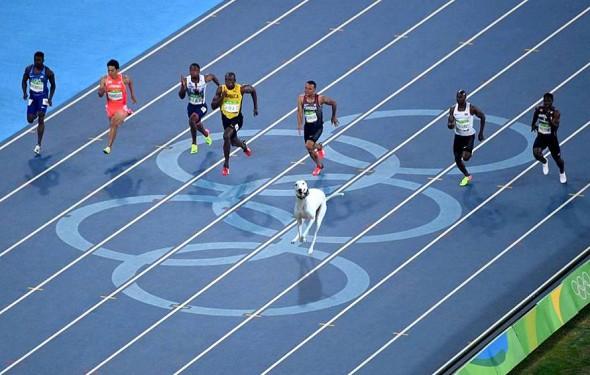8.19.16 - Olympics6