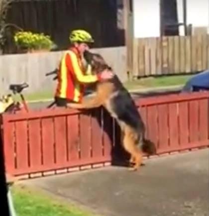8.2.16 - mailman and dog
