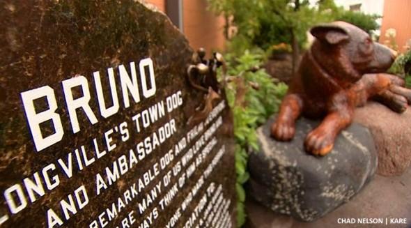 8.23.16 - Bruno - Town Ambassador13