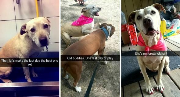 8.29.16 - Snapchat of Last Day30