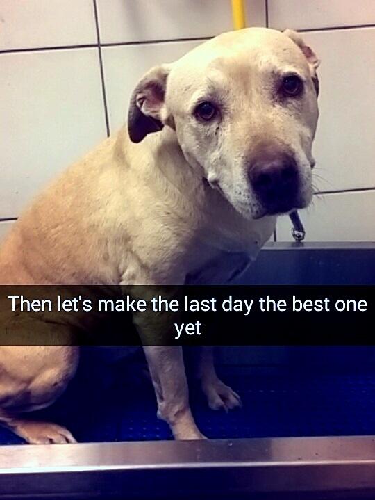 8.29.16 - Snapchat of Last Day6