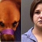 Another Imbecile Gets Herself Arrested for Posting Her Dog Abuse on Facebook