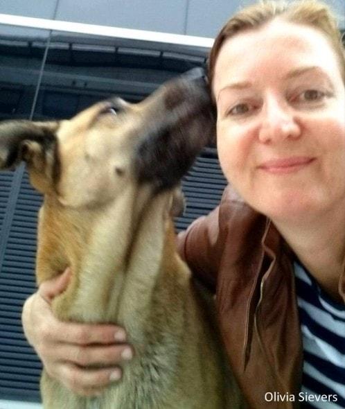 8.8.16 - Flight Attendant Adopts Hotel Dog1