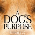 dogspurposeb