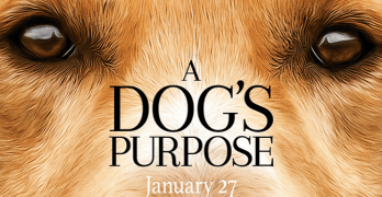 A Dog's Purpose: Coming This January