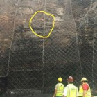 Afraid of Heights? DOT Workers Rescue Dog Trapped on Rock Wall