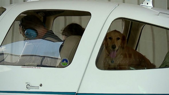 The ultimate car ride? Reece looking pretty chill as the plane rolls in. (Photo: Fox59)