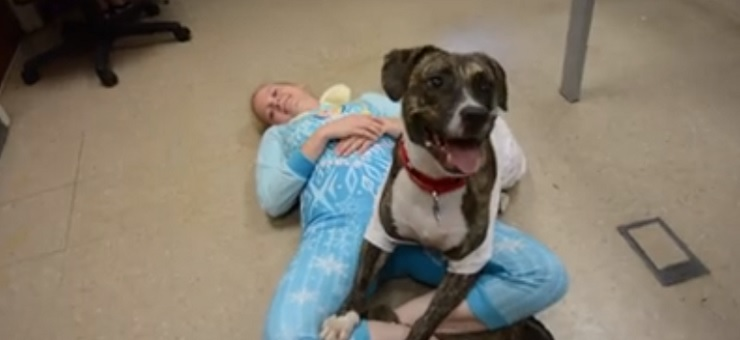 LifeLine Animal Project Throws Slumber Parties at Shelter to Spur Adoptions