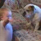 Baby Has the Most Interesting and Insightful Conversation With a Bulldog