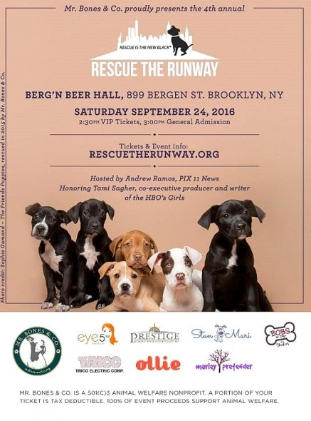 9-15-16-rescue-the-runway0