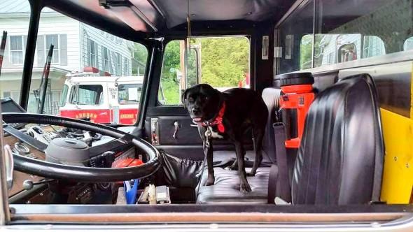 9-16-16-sophie-fire-truck1
