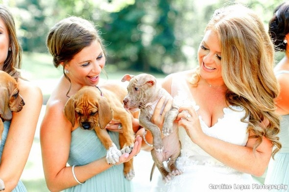 9-20-16-bridal-party-holds-rescue-puppies-instead-of-bouquets-for-their-photos3