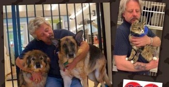 Disheveled Senior Dog Escapes His Home & Gets Help for His Neglected Siblings