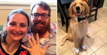 Man's Dog Helps Him Pull Off the Perfect Proposal