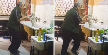 What This Groomer is Caught on Tape Doing With His Client's Dog Is Just Too Much!
