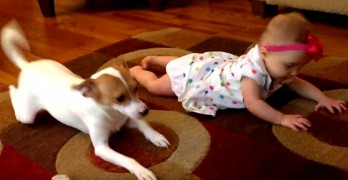Dog Hilariously Tries to Teach Baby How to Crawl