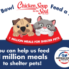 """""""Fill a Bowl… Feed a Soul"""" Campaign Is Chicken Soup for Shelter Pets"""