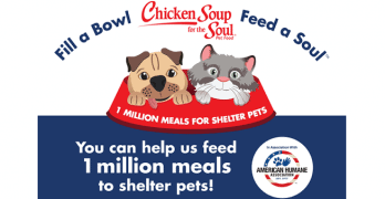 """Fill a Bowl… Feed a Soul"" Campaign Is Chicken Soup for Shelter Pets"