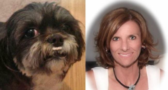 Devoted Dog, Stabbed, Stays By Slain Owner's Side