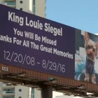 Beloved Dog Memorialized on Las Vegas Billboard