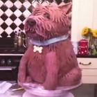 Amazing Pound (Cake) Puppy Created Before Your Eyes