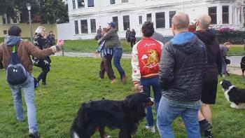Caught on Camera: Scuffle at Dog Park After Man Kicks Dog!